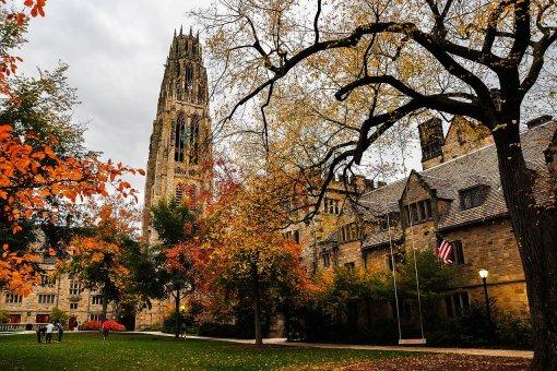 Harvard, Yale, Brown Endowments покупают биткоины не менее года