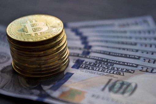 WisdomTree обдумывает создание стейблкойна, привязанного к доллару