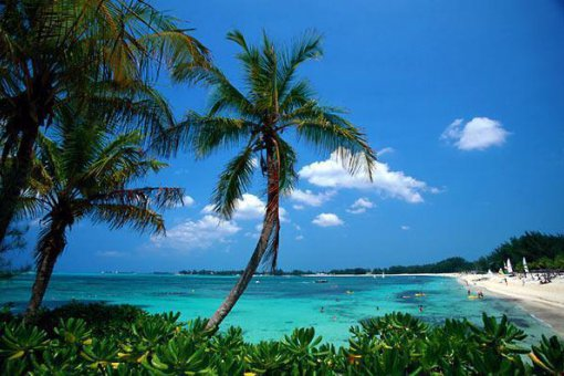Центральный банк Багамских островов протестирует запуск цифровой валюты