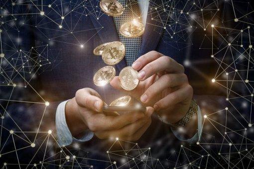Биткойн-бизнес растет:  57%  руководителей крипто-компаний ожидают ускорения развития отрасли