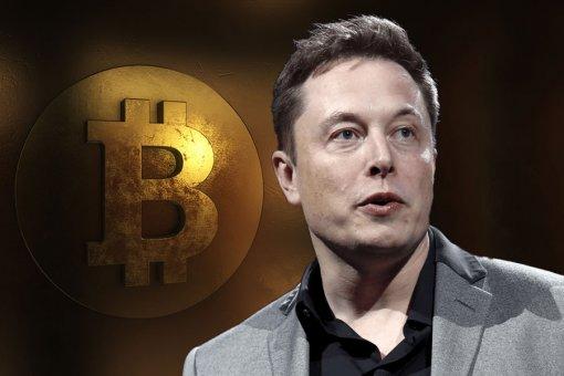 Илон Маск: «Мир готов к криптовалюте»