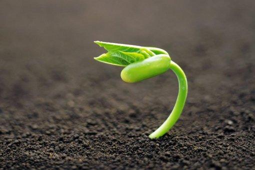Основатель DeFi считает, что урожайность - огромная проблема