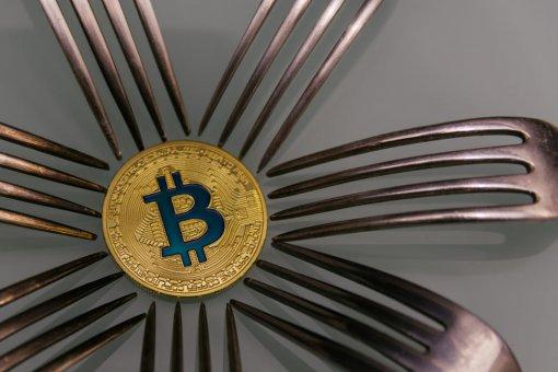 Сторонники Bitcoin Cash: биткоин бесполезен, он упадет до нуля