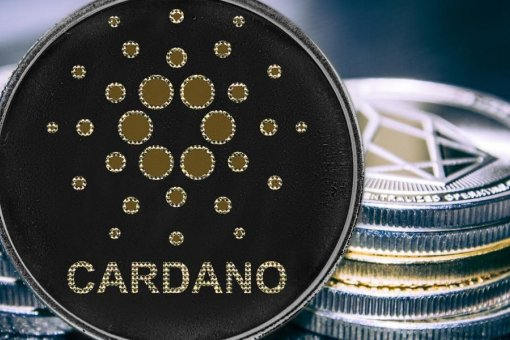 FD7 Ventures создает фонд в размере 250 миллионов долларов для разработчиков Cardano и Polkadot