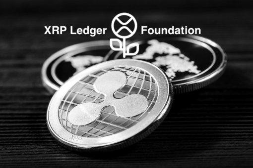 XRP Ledger Foundation опровергает слухи: Ripple не бросит XRP