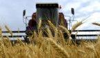 Первый сельскохозяйственный блокчейн-проект зарегистрирован в Женеве